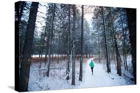 Noelle Zmuda, Winter Run At Balto Dog Park Along The Pend Oreille River Near Sandpoint, Idaho-Ben Herndon-Stretched Canvas Print