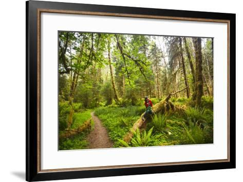 Woman Pauses For A Drink Of Water Along The Bogachiel Rain Forest Trail #825 In The Olympic NP-Ben Herndon-Framed Art Print