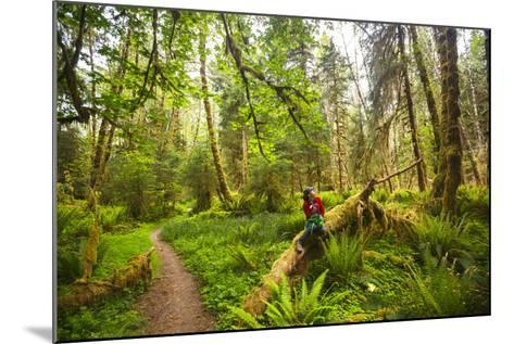 Woman Pauses For A Drink Of Water Along The Bogachiel Rain Forest Trail #825 In The Olympic NP-Ben Herndon-Mounted Photographic Print
