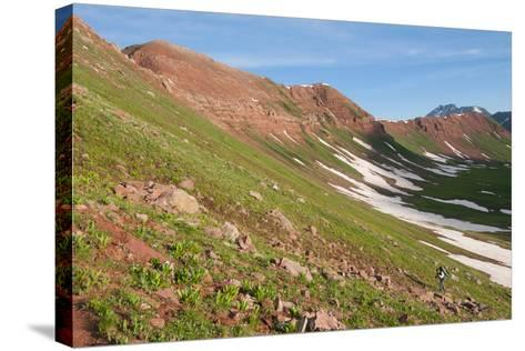 Male Backpacking Out Of Fravert Basin Towards Frigid Air Pass Along 4 Pass Loop, Aspen, Colorado-Austin Cronnelly-Stretched Canvas Print