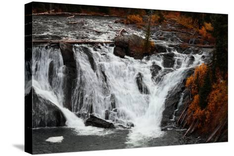 The 30 Foot Lewis Falls In Yellowstone National Park In Autumn-Ben Herndon-Stretched Canvas Print