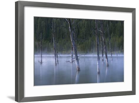 Early Morning Mist Rising Off Of Earthquake (Quake) Lake In SW Montana, Near West Yellowstone-Austin Cronnelly-Framed Art Print