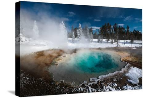 Tropic-Blue Of Silex Spring Along The Fountain Paint Pot Nature Trail In Yellowstone National Park-Ben Herndon-Stretched Canvas Print