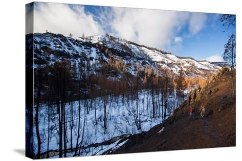 Winter Fly Fishing In Rugged Northeastern Oregon-Ben Herndon-Stretched Canvas Print