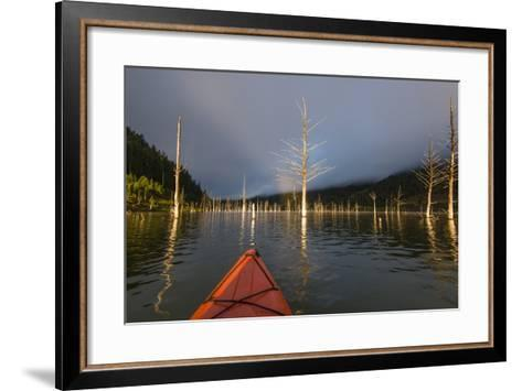 First Person POV Of Kayaking, Through The Trees Of Earthquake Lake In SW Montana, Near Yellowstone-Austin Cronnelly-Framed Art Print