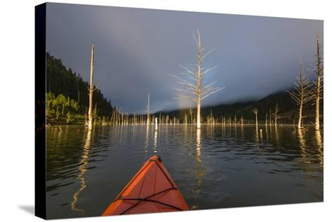 First Person POV Of Kayaking, Through The Trees Of Earthquake Lake In SW Montana, Near Yellowstone-Austin Cronnelly-Stretched Canvas Print
