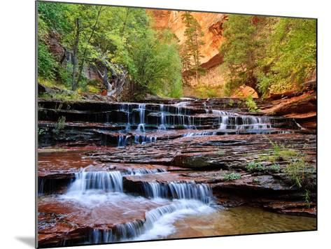 Arch Angel Falls, Near The Subway In The Back Country Of Zion National Park, Utah-Austin Cronnelly-Mounted Photographic Print