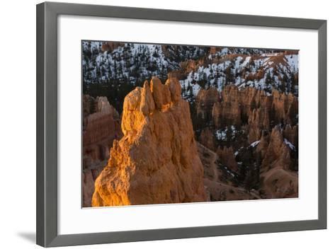 Early Sunrise Light Illuminating The Hoodoos Of Bryce Canyon, Bryce Canyon National Park, Utah-Mike Cavaroc-Framed Art Print