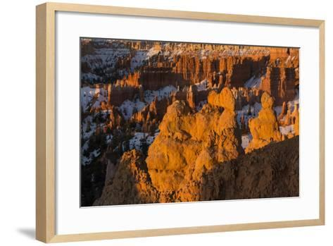 Early Sunrise Light Illuminating The Hoodoos Of Bryce Canyon, Bryce Canyon National Park, Utah-Mike Cavaroc-Framed Art Print