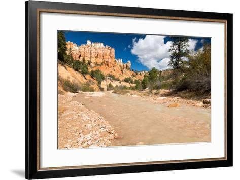 The Man-Made Creek Along The Mossy Cave Trail, Bryce Canyon National Park, Utah-Mike Cavaroc-Framed Art Print