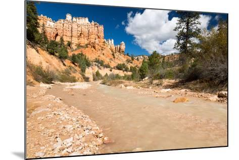 The Man-Made Creek Along The Mossy Cave Trail, Bryce Canyon National Park, Utah-Mike Cavaroc-Mounted Photographic Print
