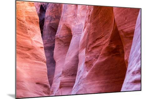 Abstract Pattern In The Sandstone Walls Of Spooky Slot Canyon. Grand Staircase-Escalante NM, Utah-Mike Cavaroc-Mounted Photographic Print