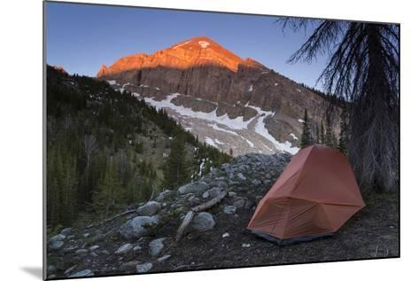 Backpacking Tent Under Evening Light Hitting A Gros Ventre Mt Peak, Gros Ventre Wilderness, Wyoming-Mike Cavaroc-Mounted Photographic Print