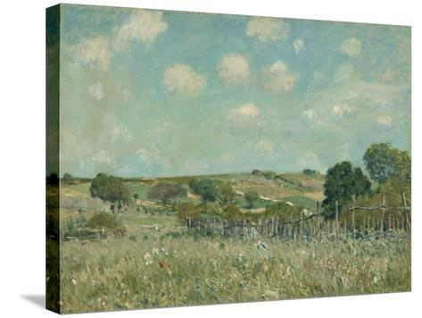 Meadow, 1875-Alfred Sisley-Stretched Canvas Print