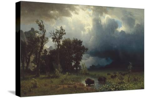 Buffalo Trail: The Impending Storm, 1869-Albert Bierstadt-Stretched Canvas Print