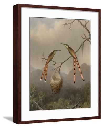 Two Hummingbirds with Their Young, c.1865-Martin Johnson Heade-Framed Art Print