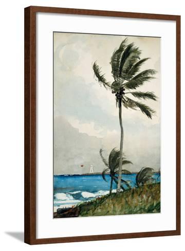 Palm Tree, Nassau, 1898-Winslow Homer-Framed Art Print