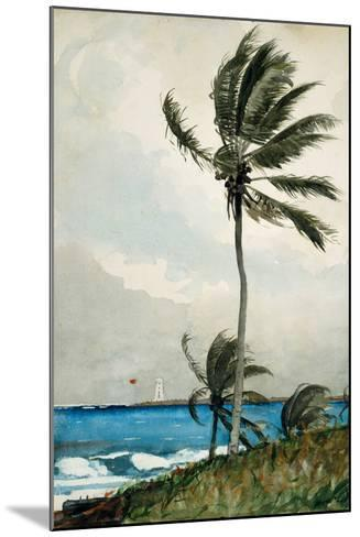 Palm Tree, Nassau, 1898-Winslow Homer-Mounted Giclee Print