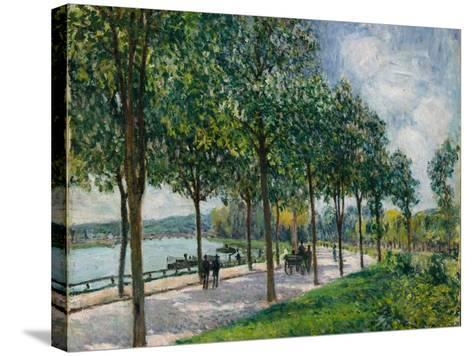 Allée of Chestnut Trees, 1878-Alfred Sisley-Stretched Canvas Print