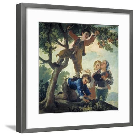 Boys Picking Fruit, 1779-80-Francisco de Goya-Framed Art Print