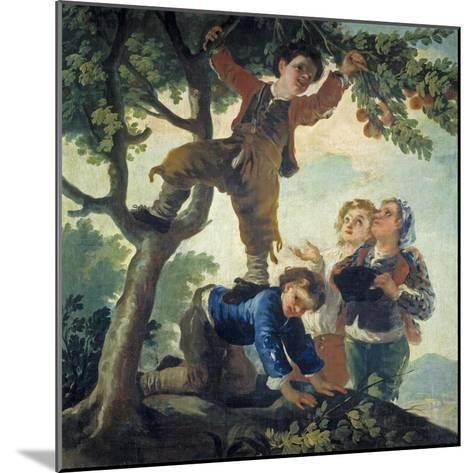 Boys Picking Fruit, 1779-80-Francisco de Goya-Mounted Giclee Print