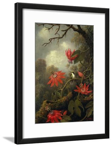 Hummingbird and Passionflowers, c.1875?85-Martin Johnson Heade-Framed Art Print