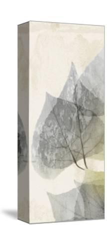 Golden Flaked 1-Albert Koetsier-Stretched Canvas Print