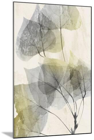 Golden Flaked 1-Albert Koetsier-Mounted Art Print