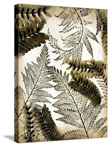 Gold Palm 1-Kimberly Allen-Stretched Canvas Print