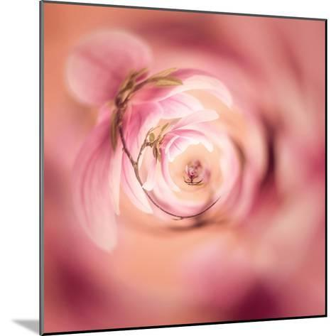 Variations On A Circle 19-Philippe Sainte-Laudy-Mounted Photographic Print