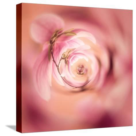 Variations On A Circle 19-Philippe Sainte-Laudy-Stretched Canvas Print