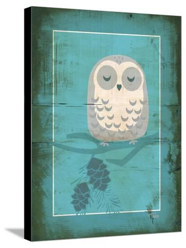 Rustic Woodland Owl-Teresa Woo-Stretched Canvas Print