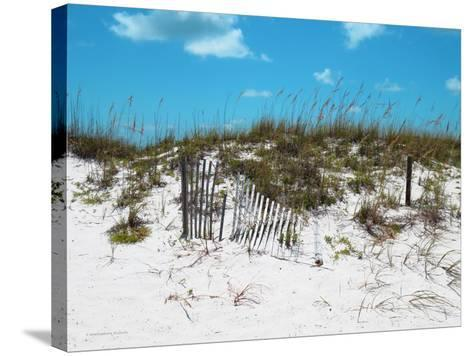 Sand Dunes II-Todd Williams-Stretched Canvas Print