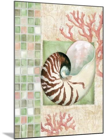 Mosaic Shell Collage I-Paul Brent-Mounted Art Print