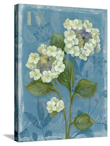 Lace Hydrangea-Pamela Gladding-Stretched Canvas Print