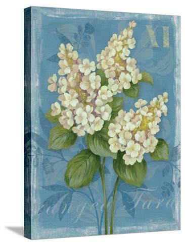Tardiva Hydrangea-Pamela Gladding-Stretched Canvas Print