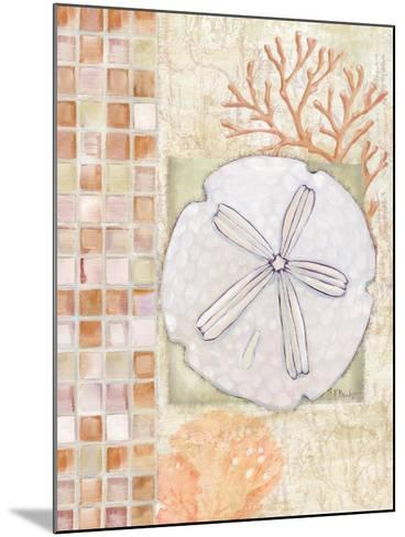 Mosaic Shell Collage IV-Paul Brent-Mounted Art Print
