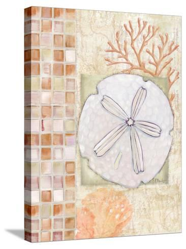 Mosaic Shell Collage IV-Paul Brent-Stretched Canvas Print