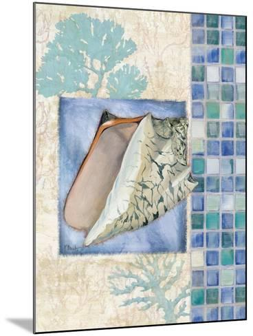 Mosaic Shell Collage III-Paul Brent-Mounted Art Print