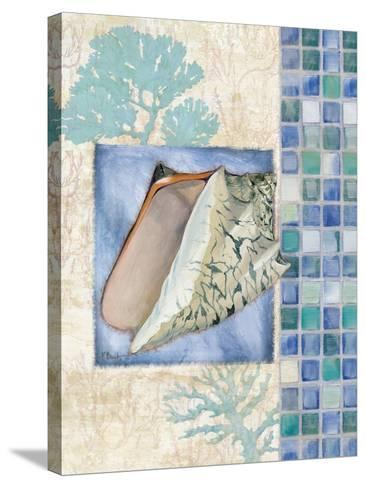 Mosaic Shell Collage III-Paul Brent-Stretched Canvas Print