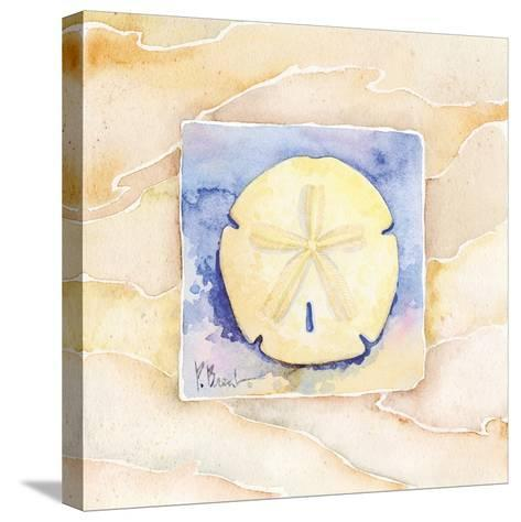 Sand dollar-Paul Brent-Stretched Canvas Print