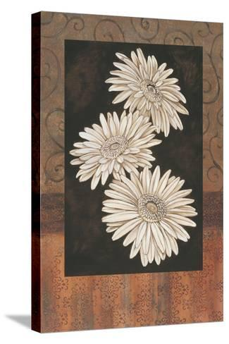 Santorini Daisies-Paul Brent-Stretched Canvas Print