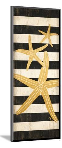 Gold Coast Starfish-Paul Brent-Mounted Art Print
