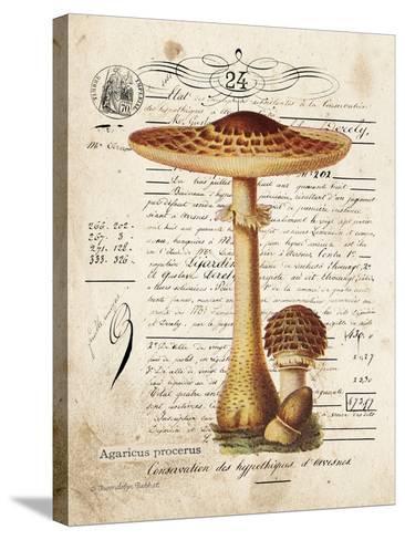 Mushroom I-Gwendolyn Babbitt-Stretched Canvas Print