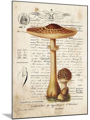 Mushroom I-Gwendolyn Babbitt-Mounted Art Print