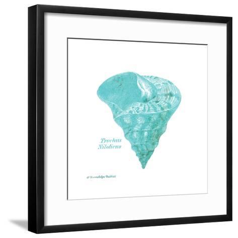 Shell on White III-Gwendolyn Babbitt-Framed Art Print