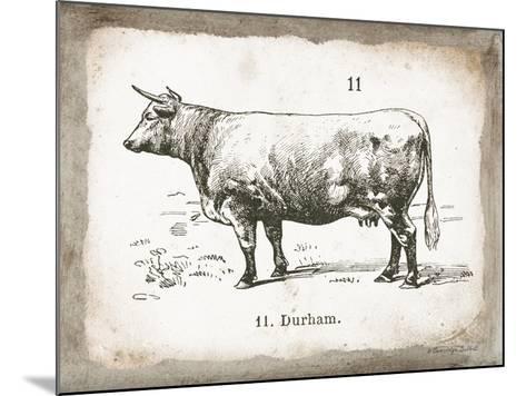 French Cow II-Gwendolyn Babbitt-Mounted Art Print