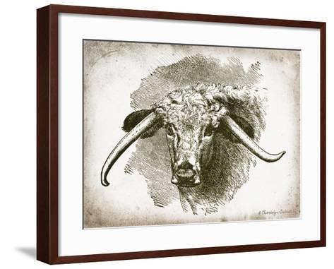 Cow Face II-Gwendolyn Babbitt-Framed Art Print