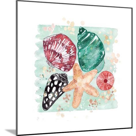 Beachcomber Shells-Sara Berrenson-Mounted Art Print