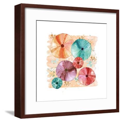 Beachcomber Sea Urchins-Sara Berrenson-Framed Art Print